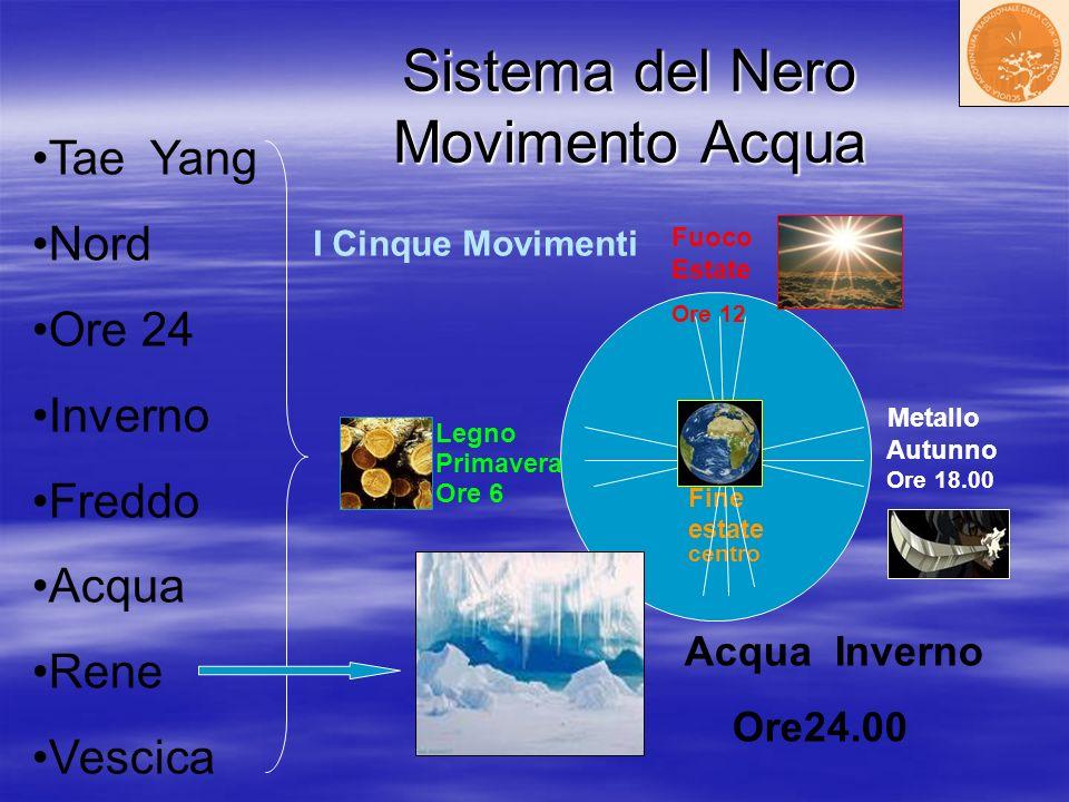 Sistema del Nero Movimento Acqua Sistema del Nero Movimento Acqua Fuoco Estate Ore 12 Terra Fine estate centro Metallo Autunno Ore 18.00 Acqua Inverno