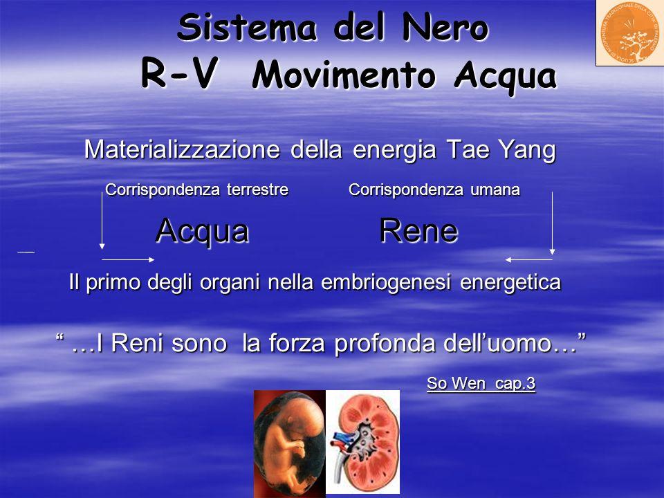 Sistema del Nero R-V Movimento Acqua Materializzazione della energia Tae Yang Materializzazione della energia Tae Yang Corrispondenza terrestre Corris
