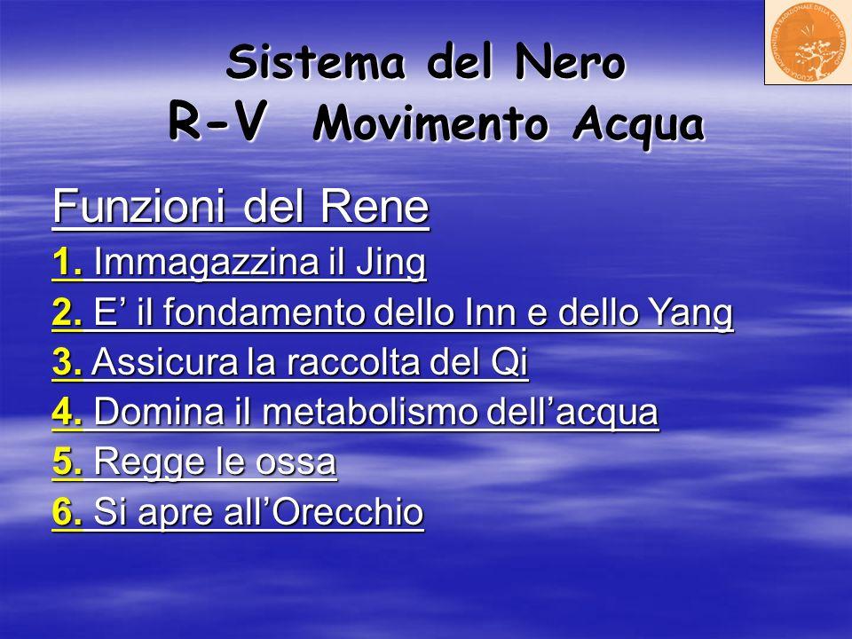 Sistema del Nero R-V Movimento Acqua Funzioni del Rene 1. Immagazzina il Jing 2. E il fondamento dello Inn e dello Yang 3. Assicura la raccolta del Qi