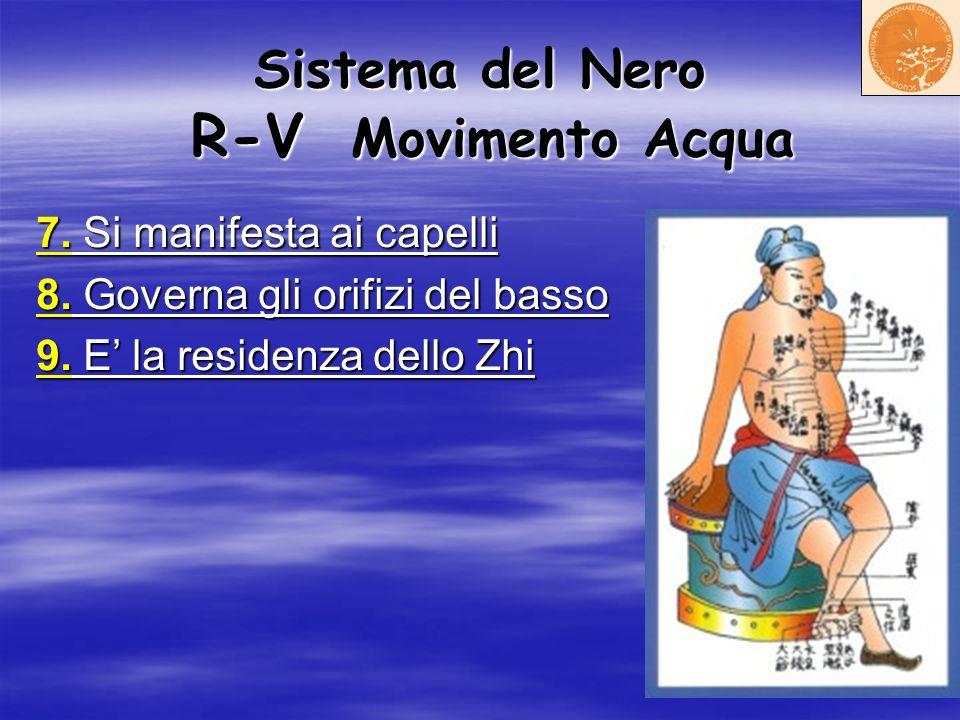 Sistema del Nero R-V Movimento Acqua 7. Si manifesta ai capelli 8. Governa gli orifizi del basso 9. E la residenza dello Zhi