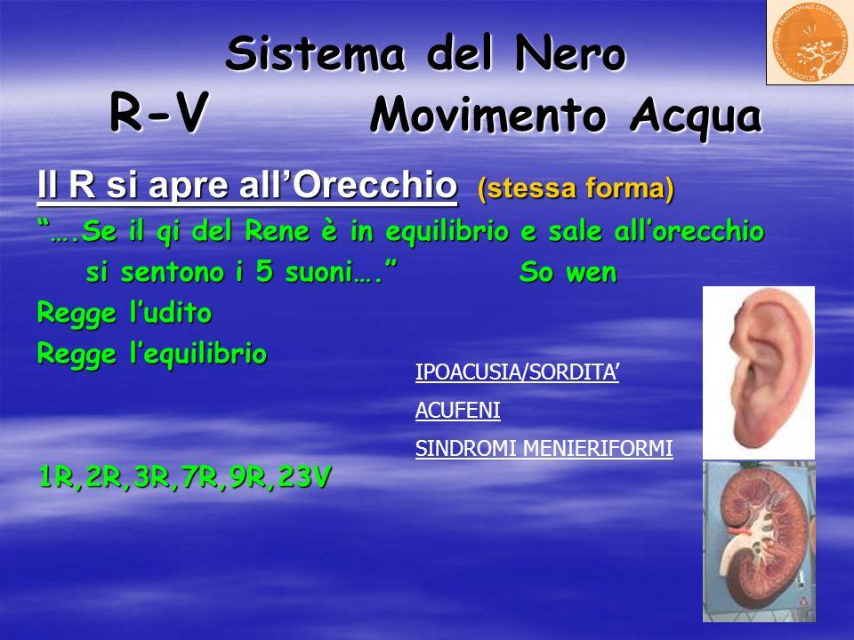 Sistema del Nero R-V Movimento Acqua Il R si apre allOrecchio (stessa forma) ….Se il qi del Rene è in equilibrio e sale allorecchio si sentono i 5 suo