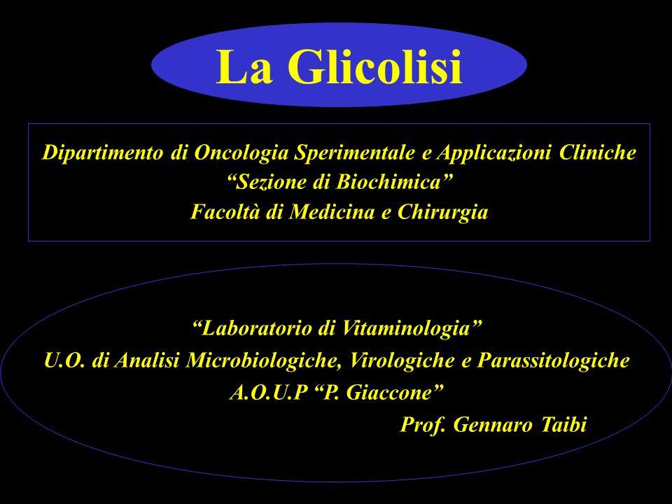 La Glicolisi Dipartimento di Oncologia Sperimentale e Applicazioni Cliniche Sezione di Biochimica Facoltà di Medicina e Chirurgia Laboratorio di Vitam