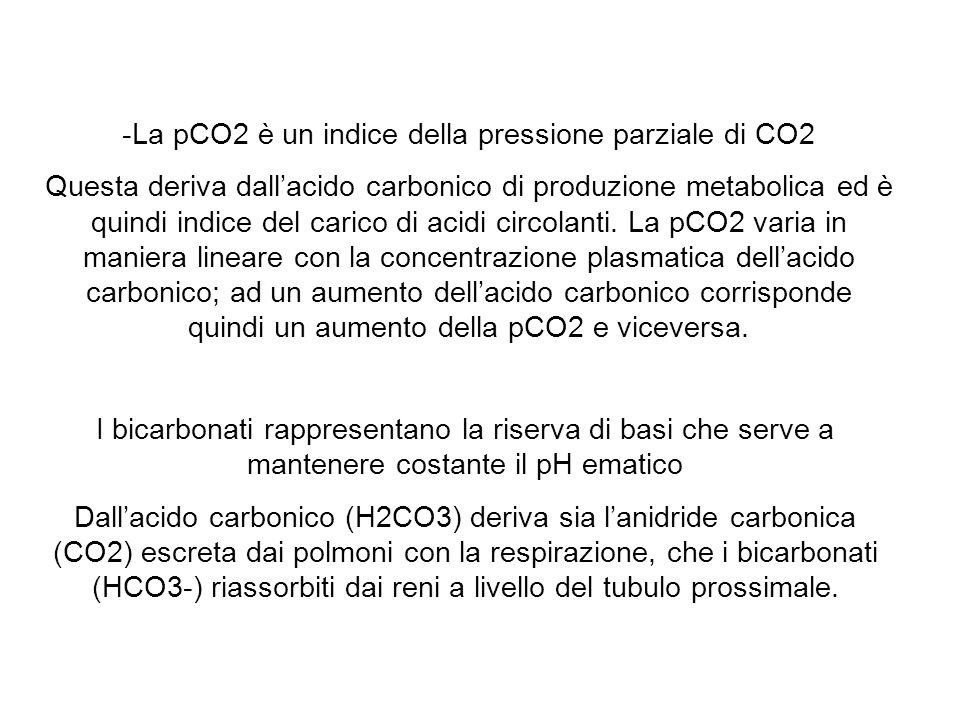 -La pCO2 è un indice della pressione parziale di CO2 Questa deriva dallacido carbonico di produzione metabolica ed è quindi indice del carico di acidi