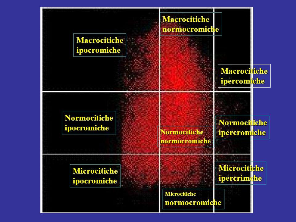 HC 41 HC 41 V > 120 946 (4.7%) 6256 (31.1%) 9 (0.0%) V 60-120 3082 (15.3%) 7553 (37.6%) 64 (0.3%) V < 60 981 (4.6%) 1221 (6.1%) 40 (0.2%) Macrocitiche