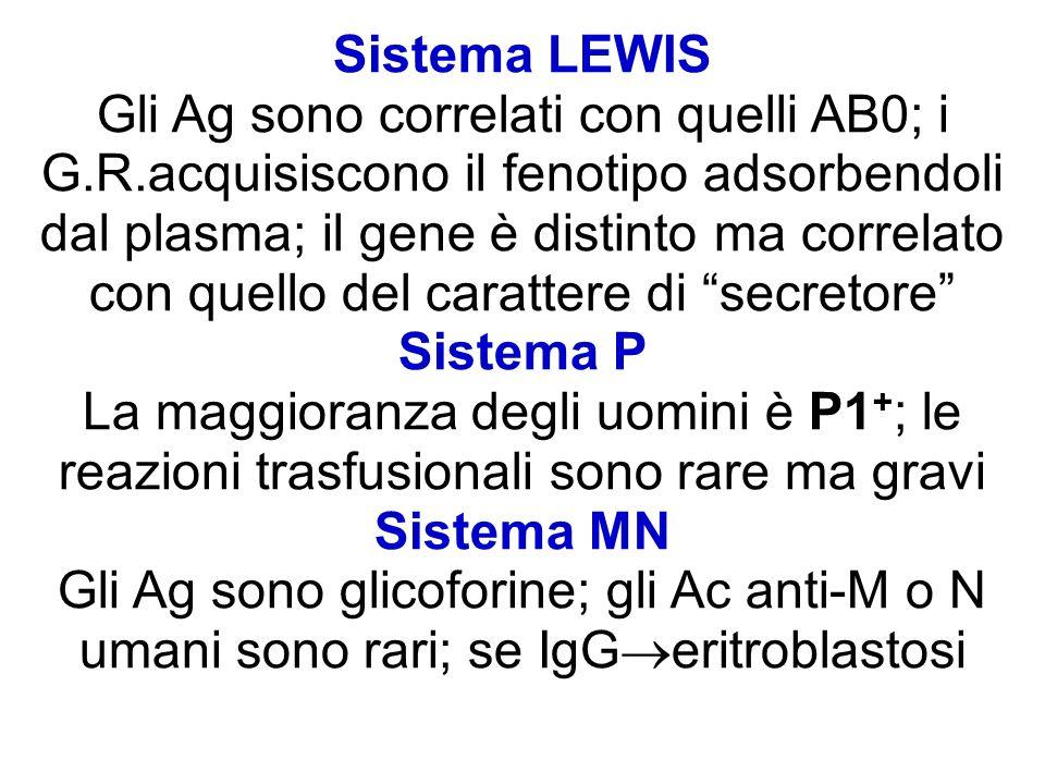 Sistema LEWIS Gli Ag sono correlati con quelli AB0; i G.R.acquisiscono il fenotipo adsorbendoli dal plasma; il gene è distinto ma correlato con quello