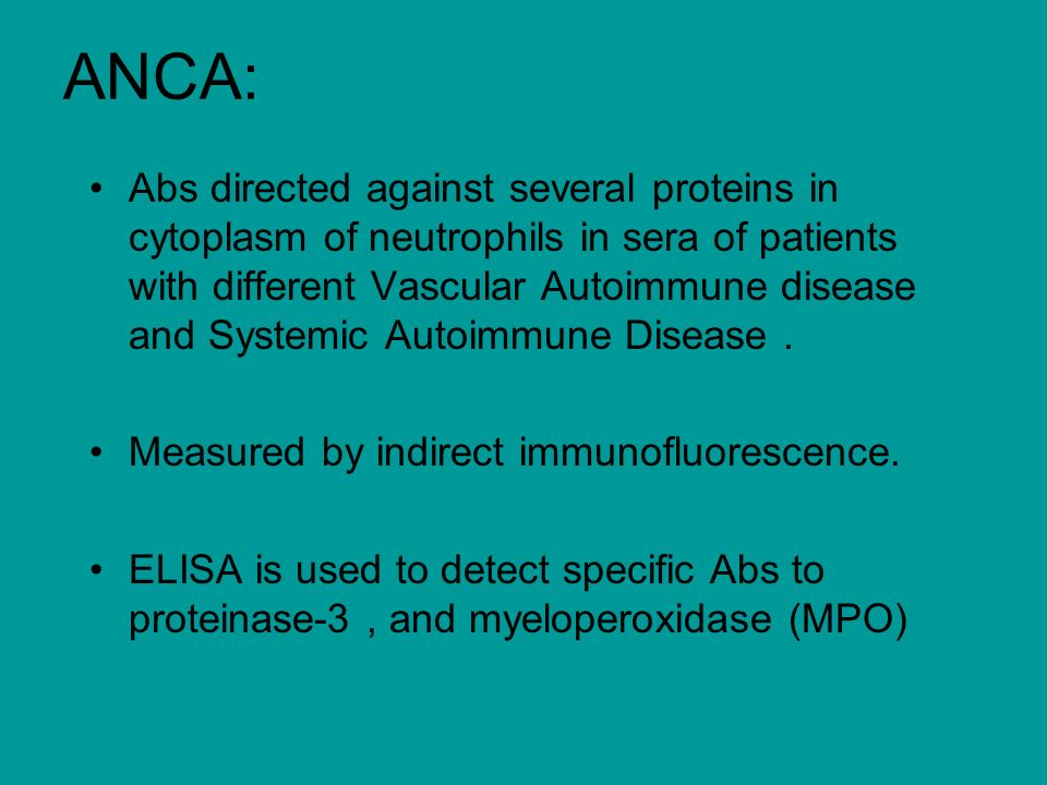 ANCA: Abs directed against several proteins in cytoplasm of neutrophils in sera of patients with different Vascular Autoimmune disease and Systemic Autoimmune Disease.