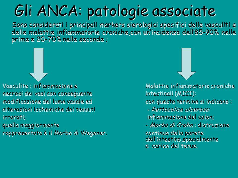 Gli ANCA: patologie associate Gli ANCA: patologie associate Sono considerati i principali markers sierologici specifici delle vasculiti e delle malatt