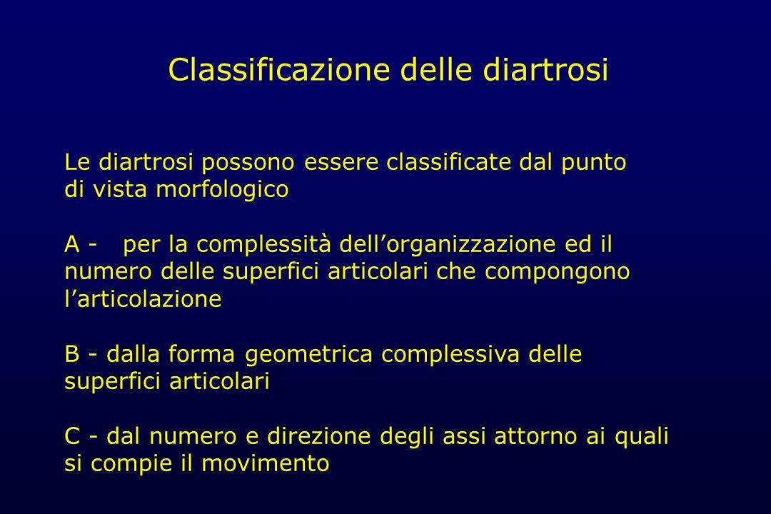 Classificazione delle diartrosi Le diartrosi possono essere classificate dal punto di vista morfologico A - per la complessità dellorganizzazione ed i