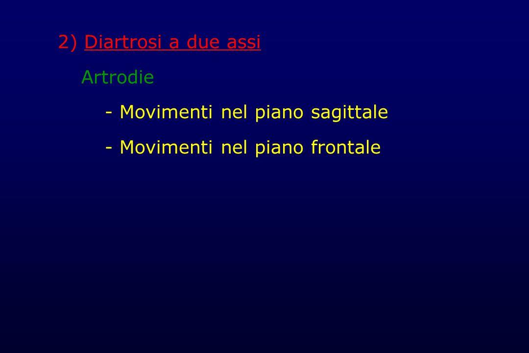 2) Diartrosi a due assi Artrodie - Movimenti nel piano sagittale - Movimenti nel piano frontale
