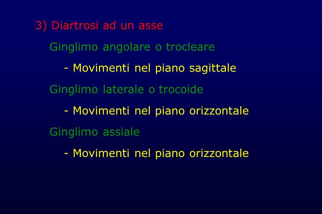 3) Diartrosi ad un asse Ginglimo angolare o trocleare - Movimenti nel piano sagittale Ginglimo laterale o trocoide - Movimenti nel piano orizzontale G