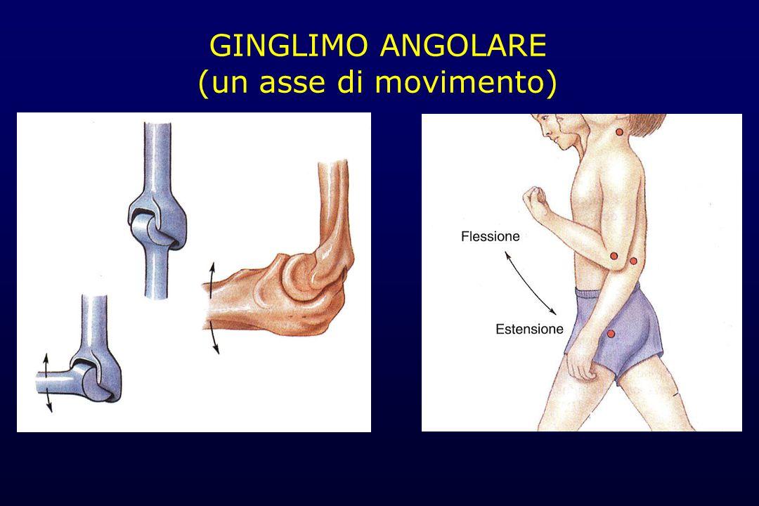GINGLIMO ANGOLARE (un asse di movimento)