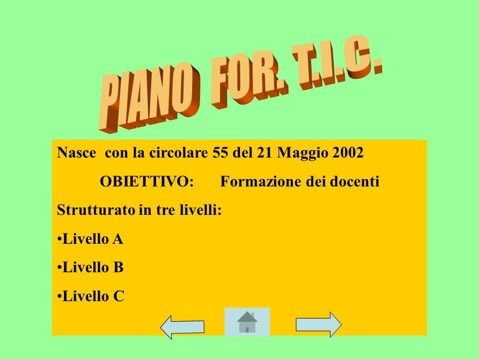 Nasce con la circolare 55 del 21 Maggio 2002 OBIETTIVO: Formazione dei docenti Strutturato in tre livelli: Livello A Livello B Livello C