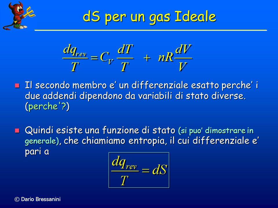 © Dario Bressanini dS per un gas Ideale Il secondo membro e un differenziale esatto perche i due addendi dipendono da variabili di stato diverse.