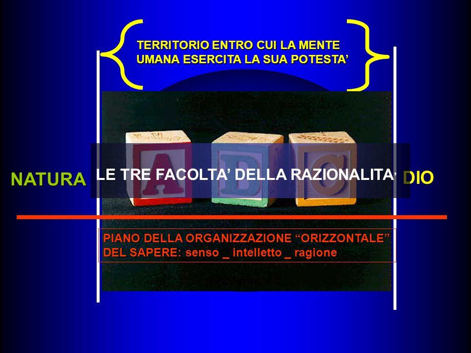LOGICA-ANALITICA UOMO (TERRITORIO ENTRO CUI LA RAGIONE è LEGIFERANTE) ESTETICA DIALETTICA NATURA DIO TERRITORIO ENTRO CUI LA MENTE UMANA ESERCITA LA SUA POTESTA PIANO DELLA ORGANIZZAZIONE ORIZZONTALE DEL SAPERE: senso _ intelletto _ ragione LE TRE FACOLTA DELLA RAZIONALITA