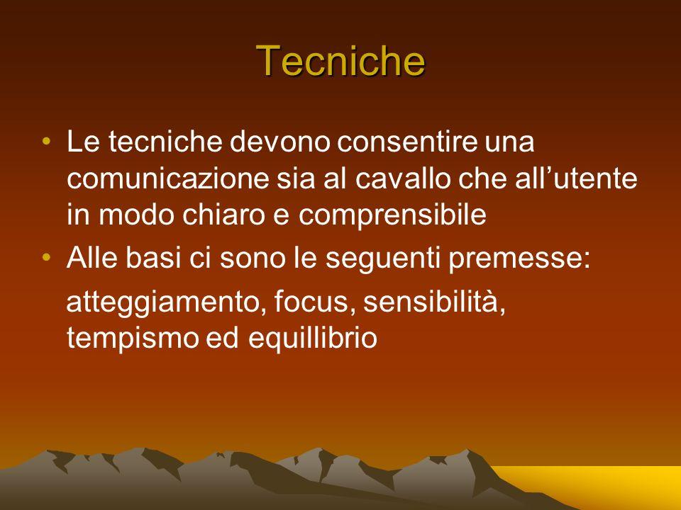 Tecniche Le tecniche devono consentire una comunicazione sia al cavallo che allutente in modo chiaro e comprensibile Alle basi ci sono le seguenti premesse: atteggiamento, focus, sensibilità, tempismo ed equillibrio