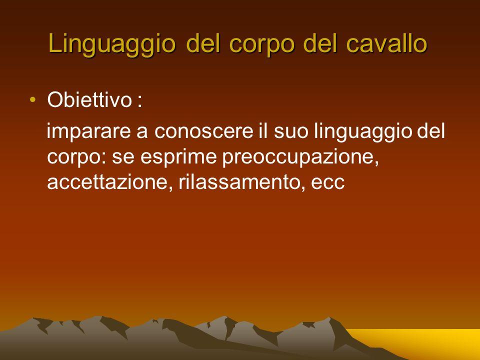 Linguaggio del corpo del cavallo Obiettivo : imparare a conoscere il suo linguaggio del corpo: se esprime preoccupazione, accettazione, rilassamento, ecc