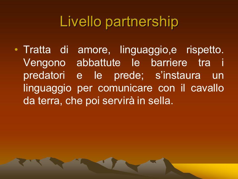 Livello partnership Tratta di amore, linguaggio,e rispetto.