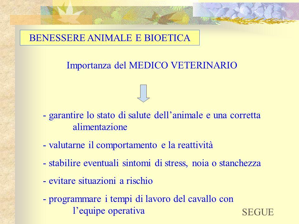 BENESSERE ANIMALE E BIOETICA Importanza del MEDICO VETERINARIO - garantire lo stato di salute dellanimale e una corretta alimentazione - valutarne il