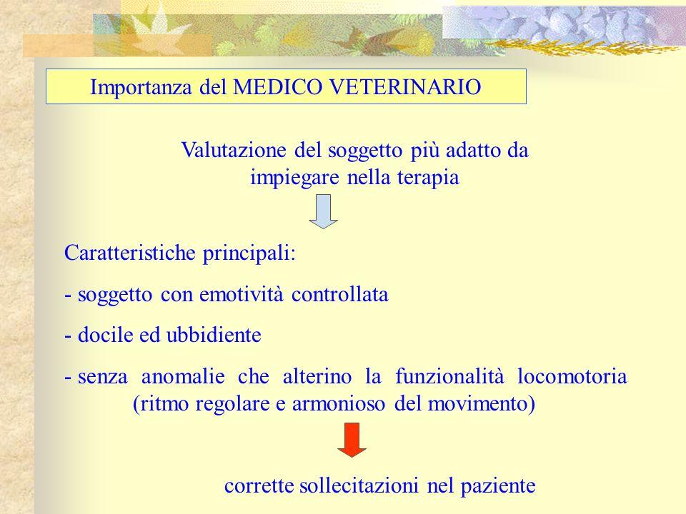 Importanza del MEDICO VETERINARIO Valutazione del soggetto più adatto da impiegare nella terapia Caratteristiche principali: - soggetto con emotività