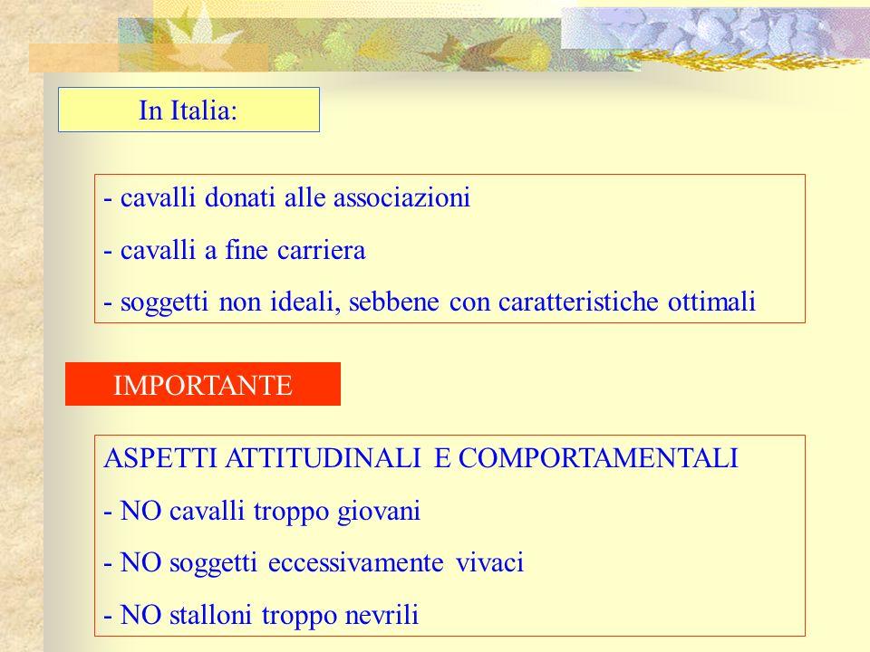 In Italia: - cavalli donati alle associazioni - cavalli a fine carriera - soggetti non ideali, sebbene con caratteristiche ottimali IMPORTANTE ASPETTI