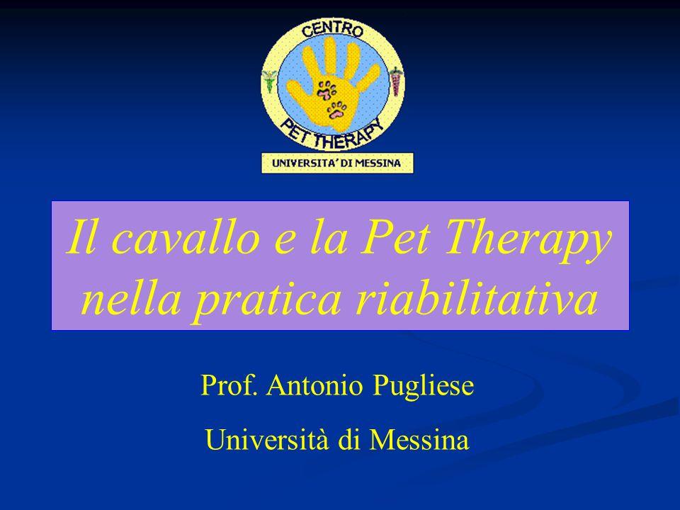 Il cavallo e la Pet Therapy nella pratica riabilitativa Prof.