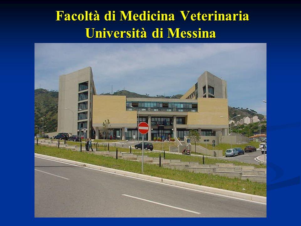 Facoltà di Medicina Veterinaria Università di Messina Facoltà di Medicina Veterinaria Università di Messina