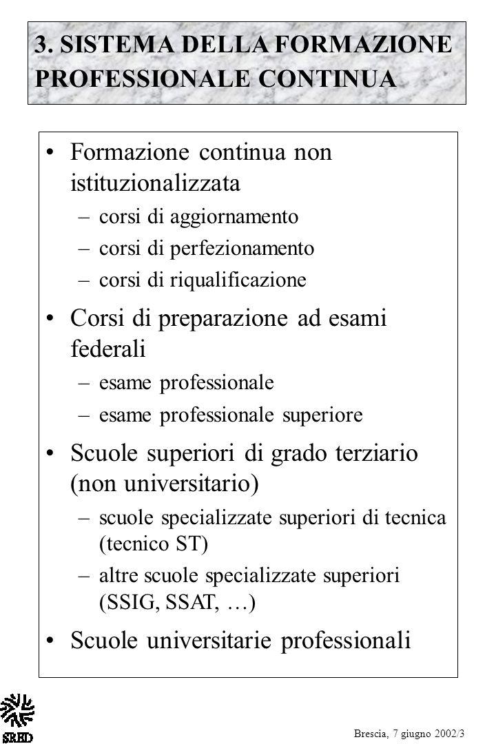 3. SISTEMA DELLA FORMAZIONE PROFESSIONALE CONTINUA Formazione continua non istituzionalizzata –corsi di aggiornamento –corsi di perfezionamento –corsi