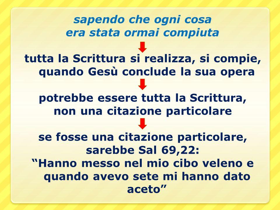 sapendo che ogni cosa era stata ormai compiuta tutta la Scrittura si realizza, si compie, quando Gesù conclude la sua opera potrebbe essere tutta la S