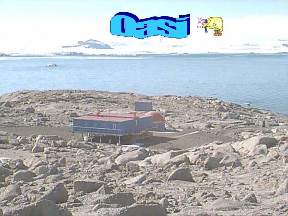 Ad una distanza di circa 500 m in linea daria delledificio principale, in una zona a circa 150 m s.l.m sorge ledificio denominato OASI.