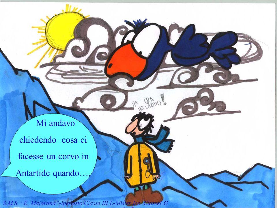 Mi andavo chiedendo cosa ci facesse un corvo in Antartide quando….