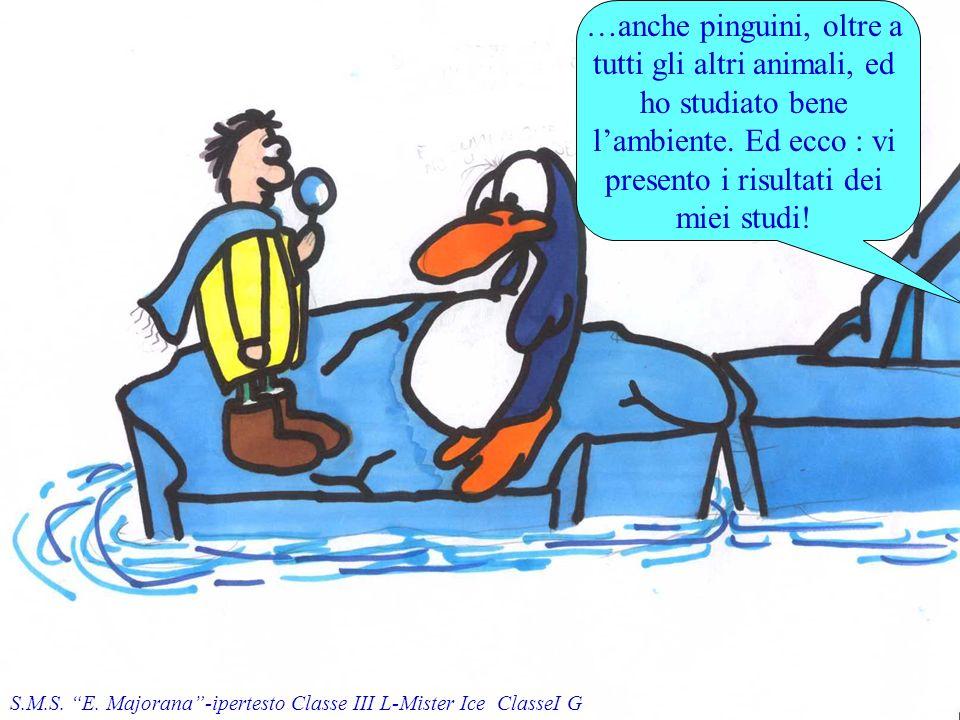 …anche pinguini, oltre a tutti gli altri animali, ed ho studiato bene lambiente.