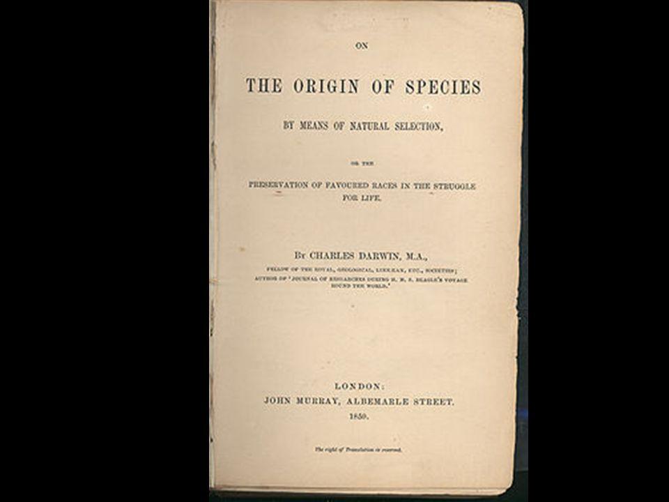 Fare ricerca sulla prevenzione: -Cognitivi -Ambientali (CT-CV);Emotivo- Comportamentali(Q.E.) INTELLIGENZA ECOLOGICA 22 Frontespizio della prima edizione Auto re Charles Darwin 1ª e d.