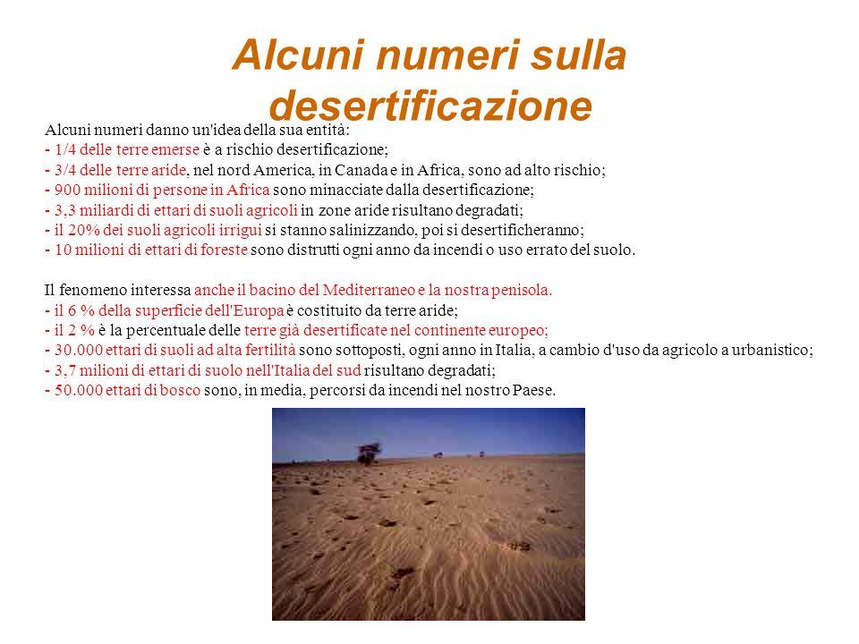 LA DESERTIFICAZIONE Desertificazione: espansione dei deserti esistenti per effetto dell'avanzamento della sabbia su ecosistemi fragili, degradati, pre