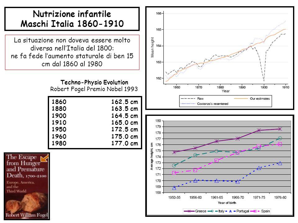 Nutrizione infantile Maschi Italia 1860-1910 1860162.5 cm 1880163.5 cm 1900164.5 cm 1910165.0 cm 1950172.5 cm 1960175.0 cm 1980177.0 cm Techno-Physio