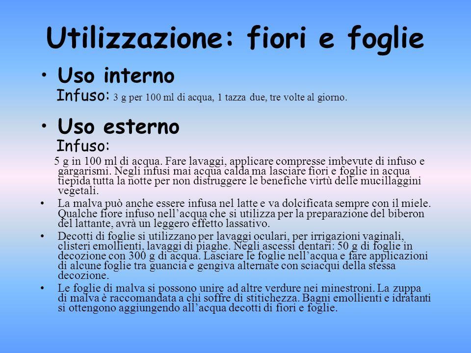 Principi attivi - fiori: flavonoidi, acido crategolico, acido ursolico, acido oleanolico e ammine.