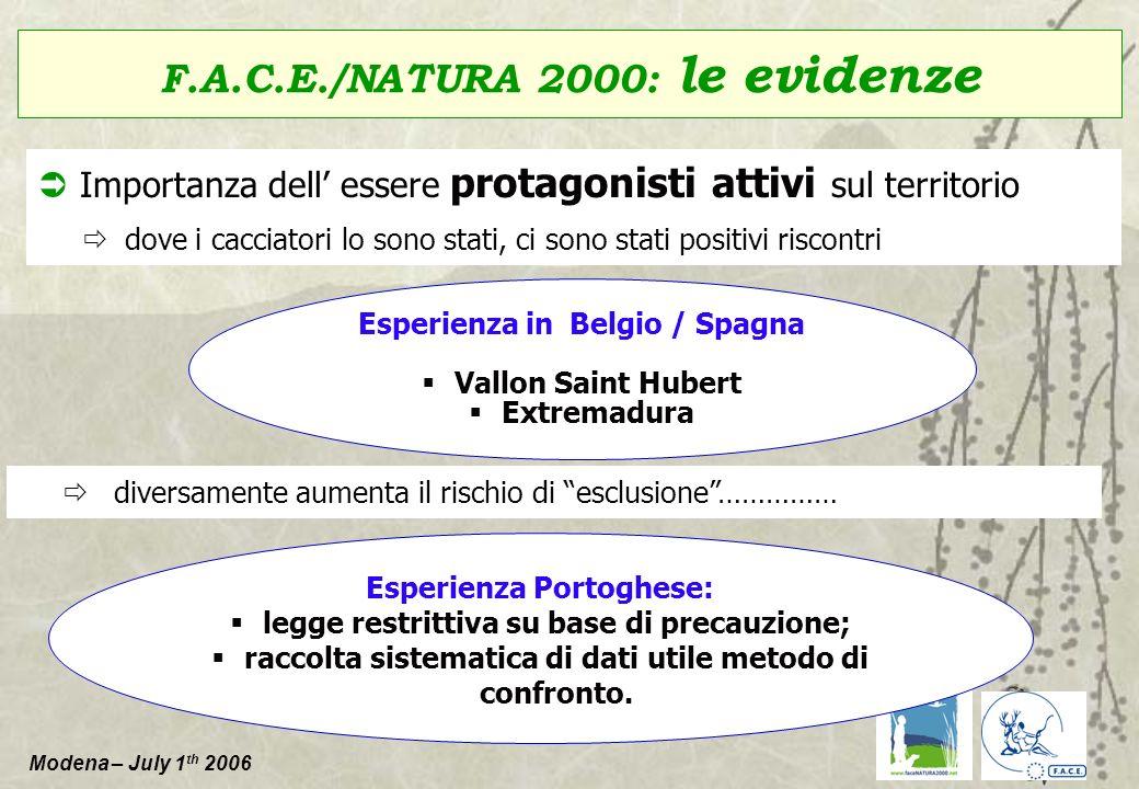 Modena – July 1 th 2006 Conferma del ruolo, importanza e potenzialità della F.A.C.E.