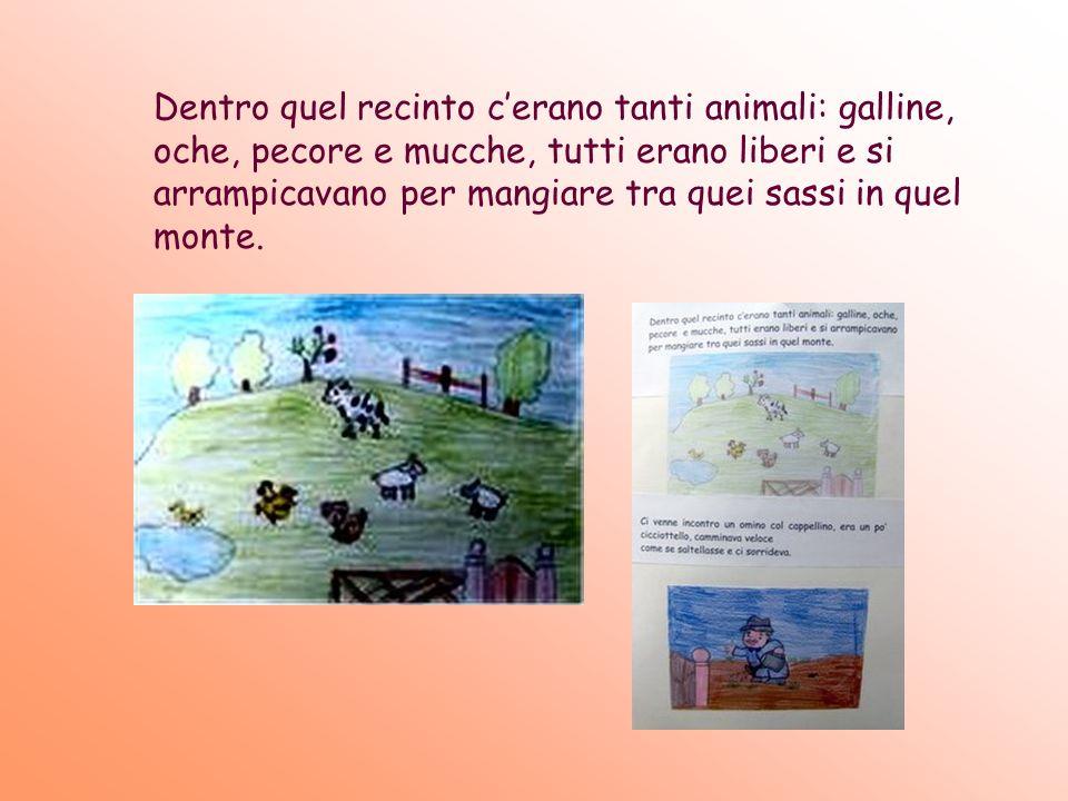 Dentro quel recinto cerano tanti animali: galline, oche, pecore e mucche, tutti erano liberi e si arrampicavano per mangiare tra quei sassi in quel mo