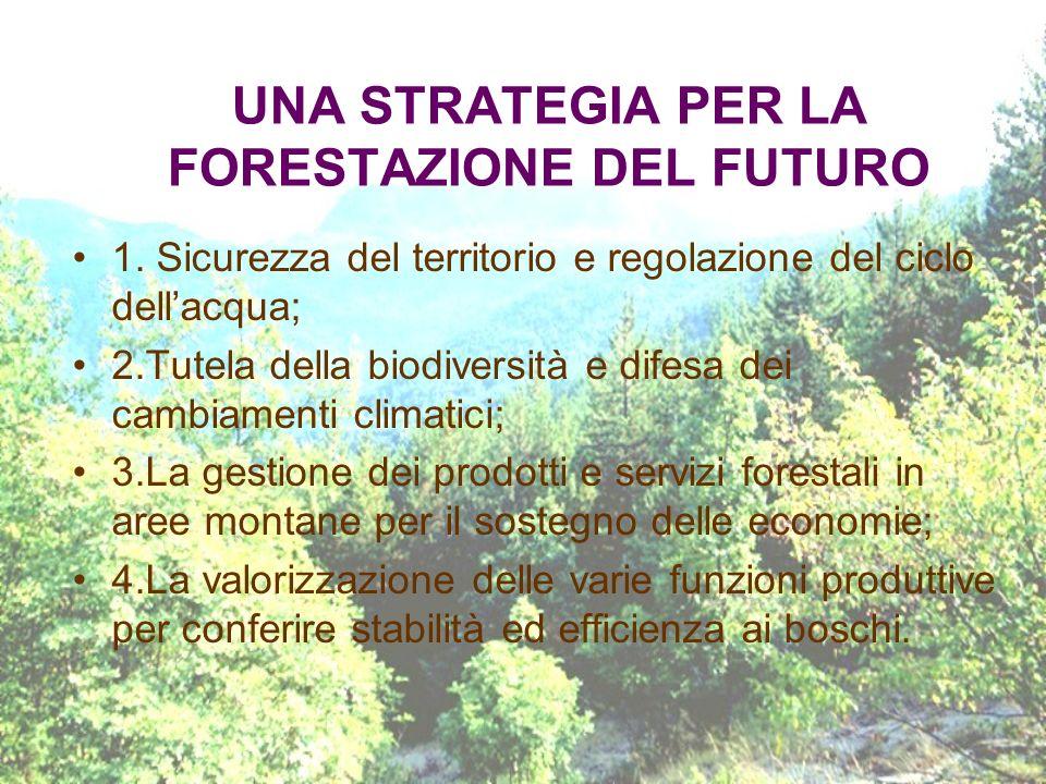 UNA STRATEGIA PER LA FORESTAZIONE DEL FUTURO 1. Sicurezza del territorio e regolazione del ciclo dellacqua; 2.Tutela della biodiversità e difesa dei c