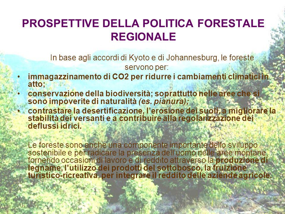 PROSPETTIVE DELLA POLITICA FORESTALE REGIONALE In base agli accordi di Kyoto e di Johannesburg, le foreste servono per: immagazzinamento di CO2 per ri