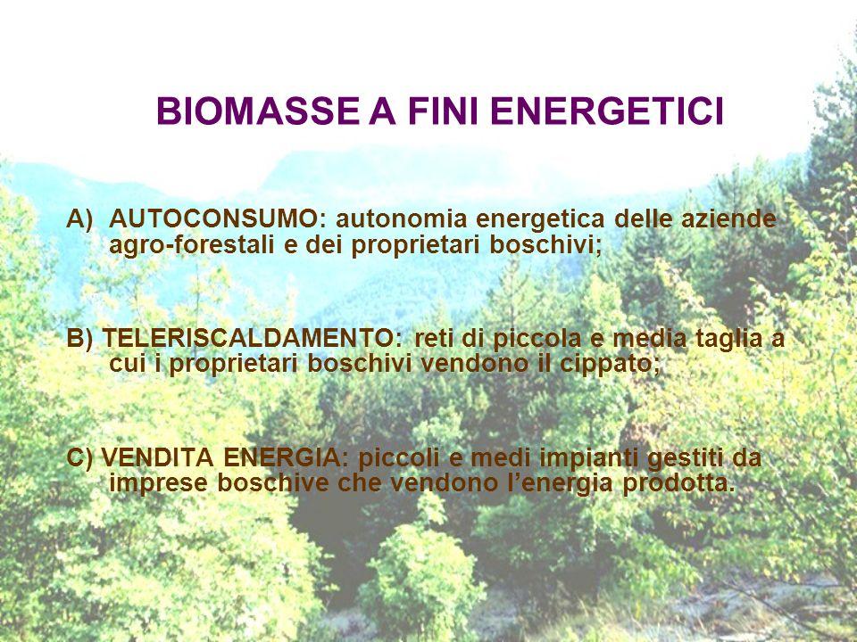 BIOMASSE A FINI ENERGETICI A)AUTOCONSUMO: autonomia energetica delle aziende agro-forestali e dei proprietari boschivi; B) TELERISCALDAMENTO: reti di