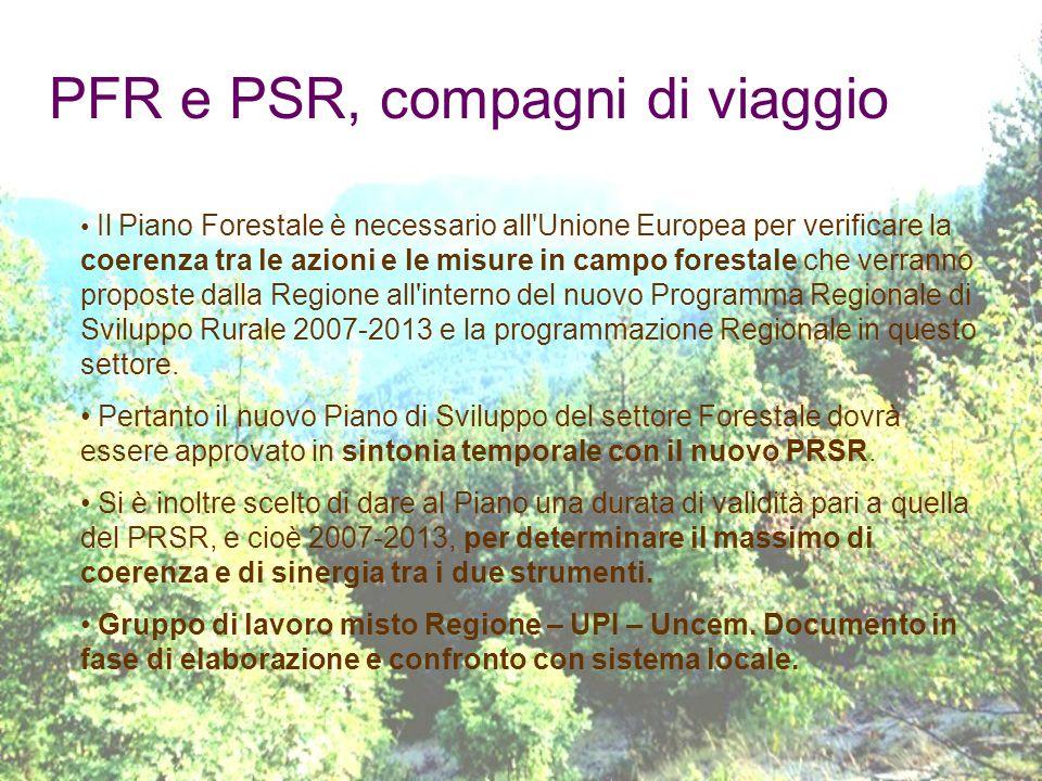 Il Piano Forestale è necessario all'Unione Europea per verificare la coerenza tra le azioni e le misure in campo forestale che verranno proposte dalla