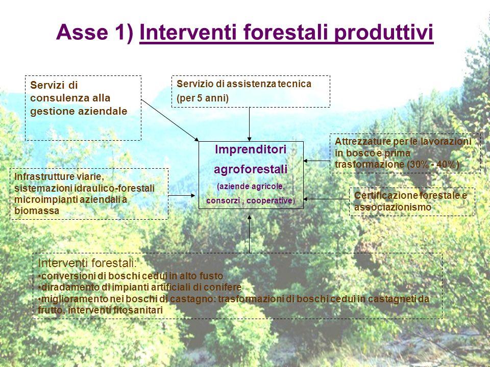 Asse 1) Interventi forestali produttivi Imprenditori agroforestali (aziende agricole, consorzi, cooperative) Servizi di consulenza alla gestione azien