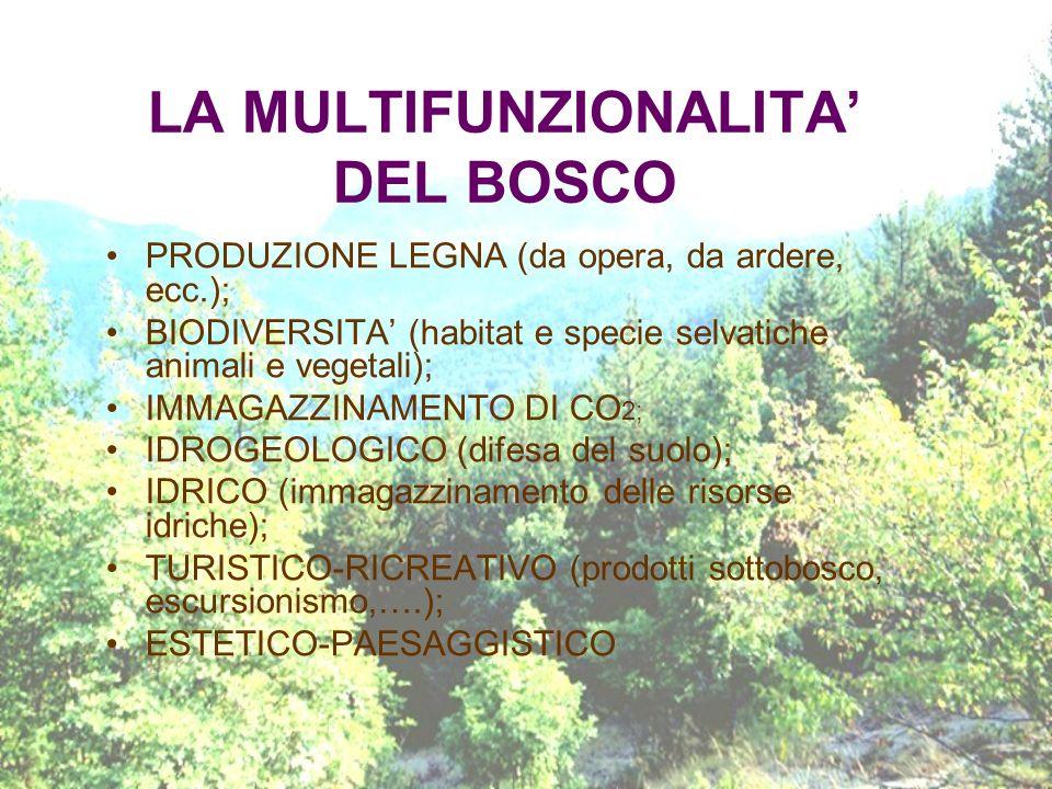 LA MULTIFUNZIONALITA DEL BOSCO PRODUZIONE LEGNA (da opera, da ardere, ecc.); BIODIVERSITA (habitat e specie selvatiche animali e vegetali); IMMAGAZZIN