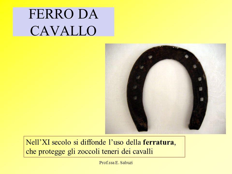 FERRO DA CAVALLO NellXI secolo si diffonde luso della ferratura, che protegge gli zoccoli teneri dei cavalli Prof.ssa E. Sabuzi