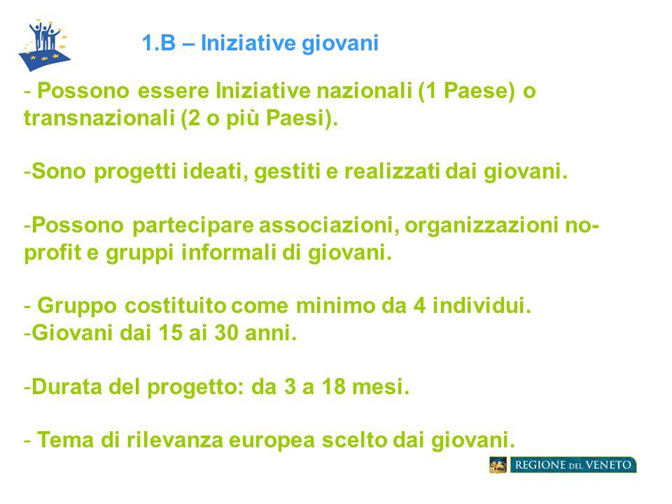 - Possono essere Iniziative nazionali (1 Paese) o transnazionali (2 o più Paesi).