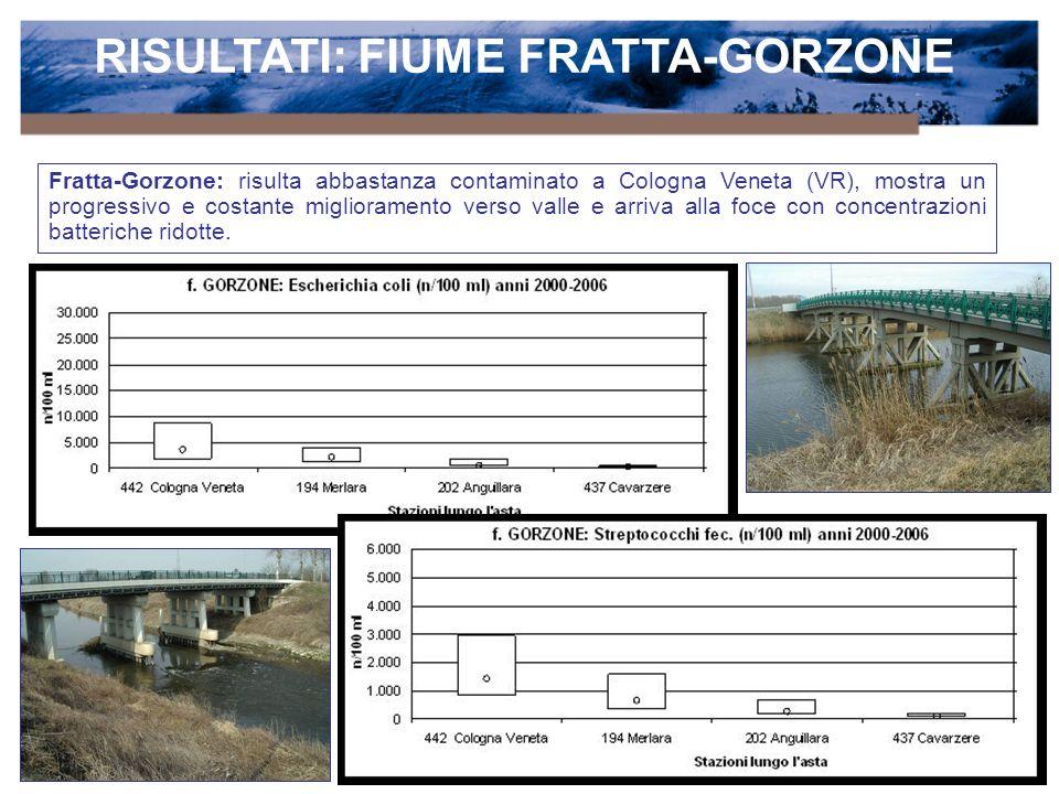 RISULTATI: FIUME FRATTA-GORZONE Fratta-Gorzone: risulta abbastanza contaminato a Cologna Veneta (VR), mostra un progressivo e costante miglioramento verso valle e arriva alla foce con concentrazioni batteriche ridotte.