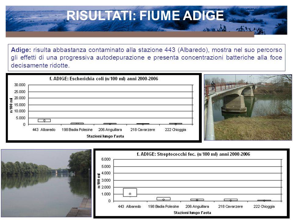 RISULTATI: FIUME ADIGE Adige: risulta abbastanza contaminato alla stazione 443 (Albaredo), mostra nel suo percorso gli effetti di una progressiva autodepurazione e presenta concentrazioni batteriche alla foce decisamente ridotte.