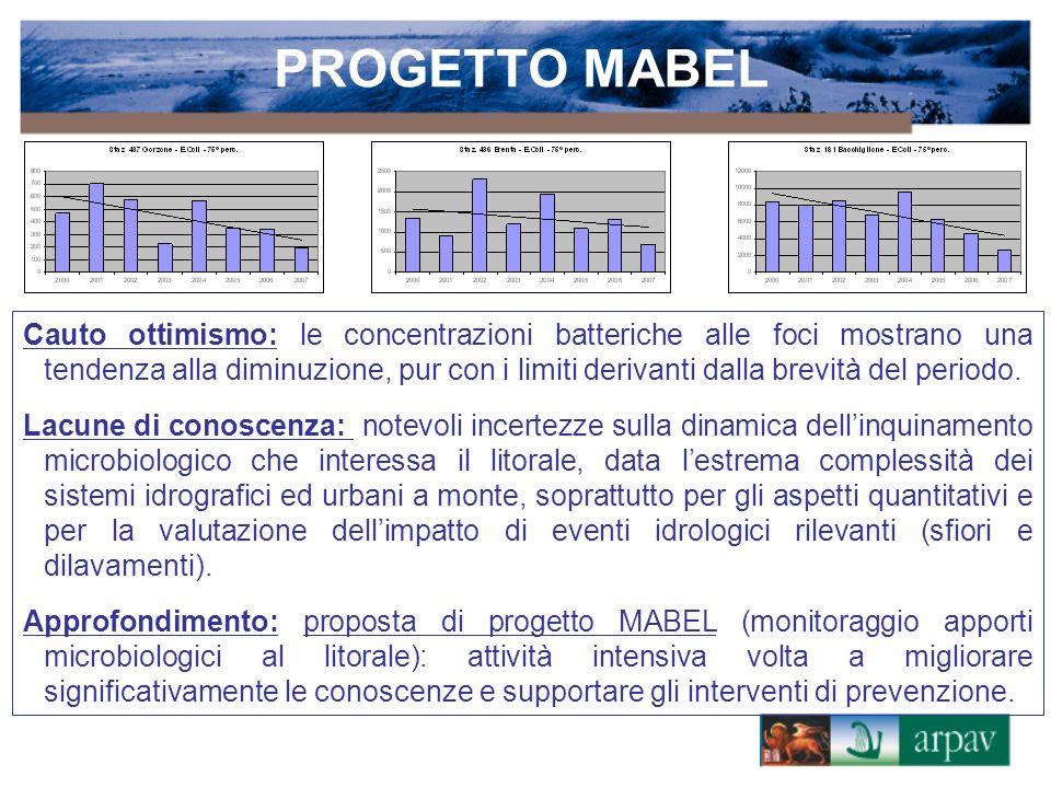 PROGETTO MABEL Cauto ottimismo: le concentrazioni batteriche alle foci mostrano una tendenza alla diminuzione, pur con i limiti derivanti dalla brevità del periodo.