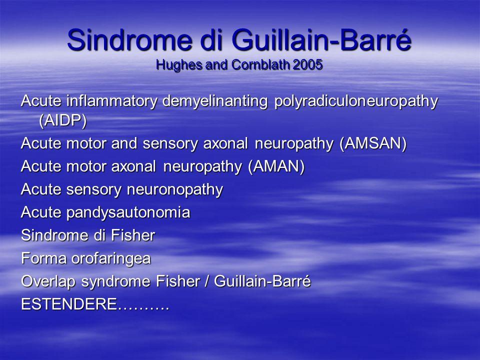 Sindrome di Guillain-Barré Hughes and Cornblath 2005 Acute inflammatory demyelinanting polyradiculoneuropathy (AIDP) Acute motor and sensory axonal neuropathy (AMSAN) Acute motor axonal neuropathy (AMAN) Acute sensory neuronopathy Acute pandysautonomia Sindrome di Fisher Forma orofaringea Overlap syndrome Fisher / Guillain-Barré ESTENDERE……….