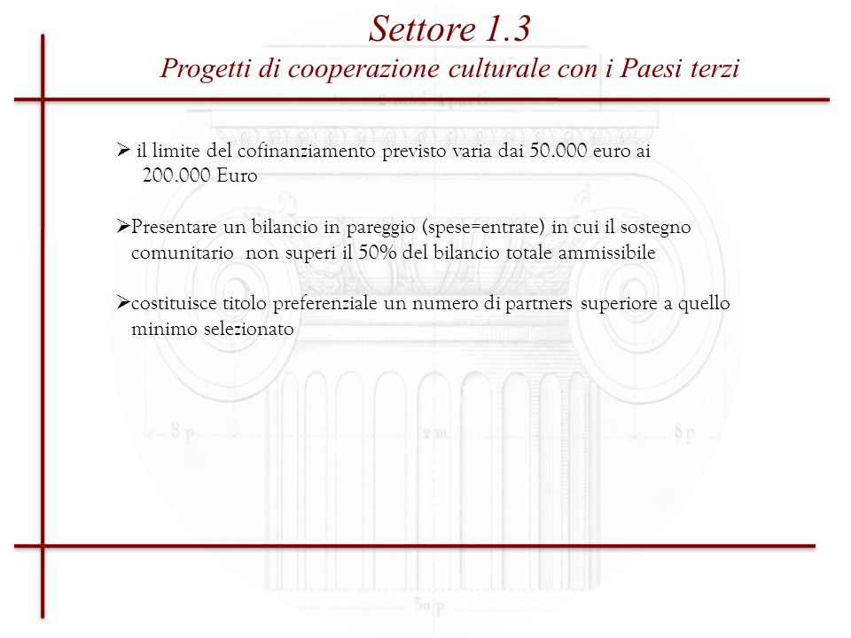 Settore 1 Progetti di Cooperazione, (01.10.2010) Supporto finanziario ad un progetto, cioè ad unazione limitata nel tempo che richiede lo svolgimento delle attività proposte Settore 2 Sostegno ad organismi attivi a livello europeo nel campo della cultura (04.11.2009) Supporto finanziario (su base annuale) ad organizzazioni esistenti per il co-finanziamento di spese relative a programmi di lavoro a lungo termine